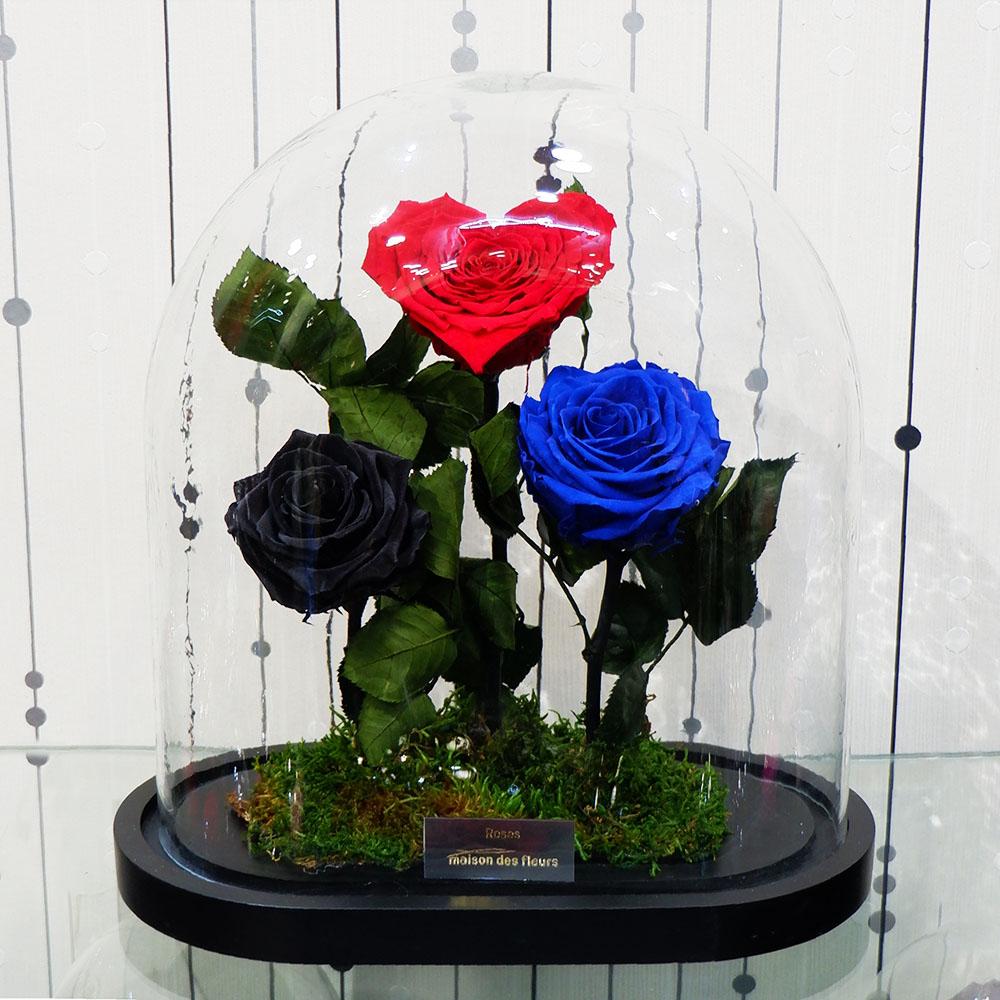 Forever Roses - Forever Love Blue Black