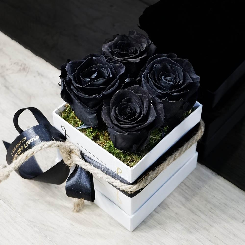 Forever black Box