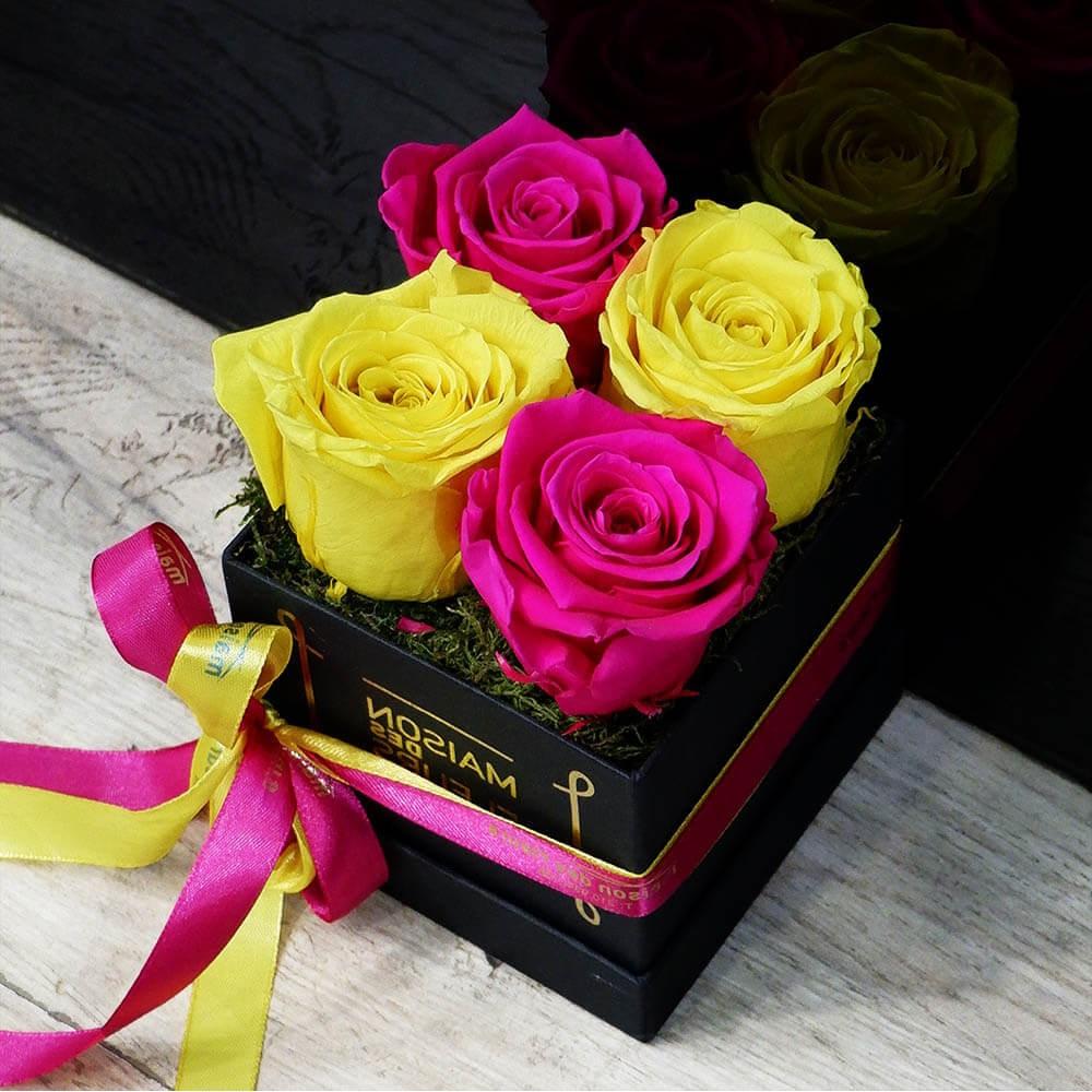 Forever Fuchsia-Yellow Box