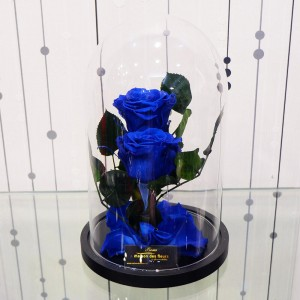 Forever Roses - Forever Twins Blue