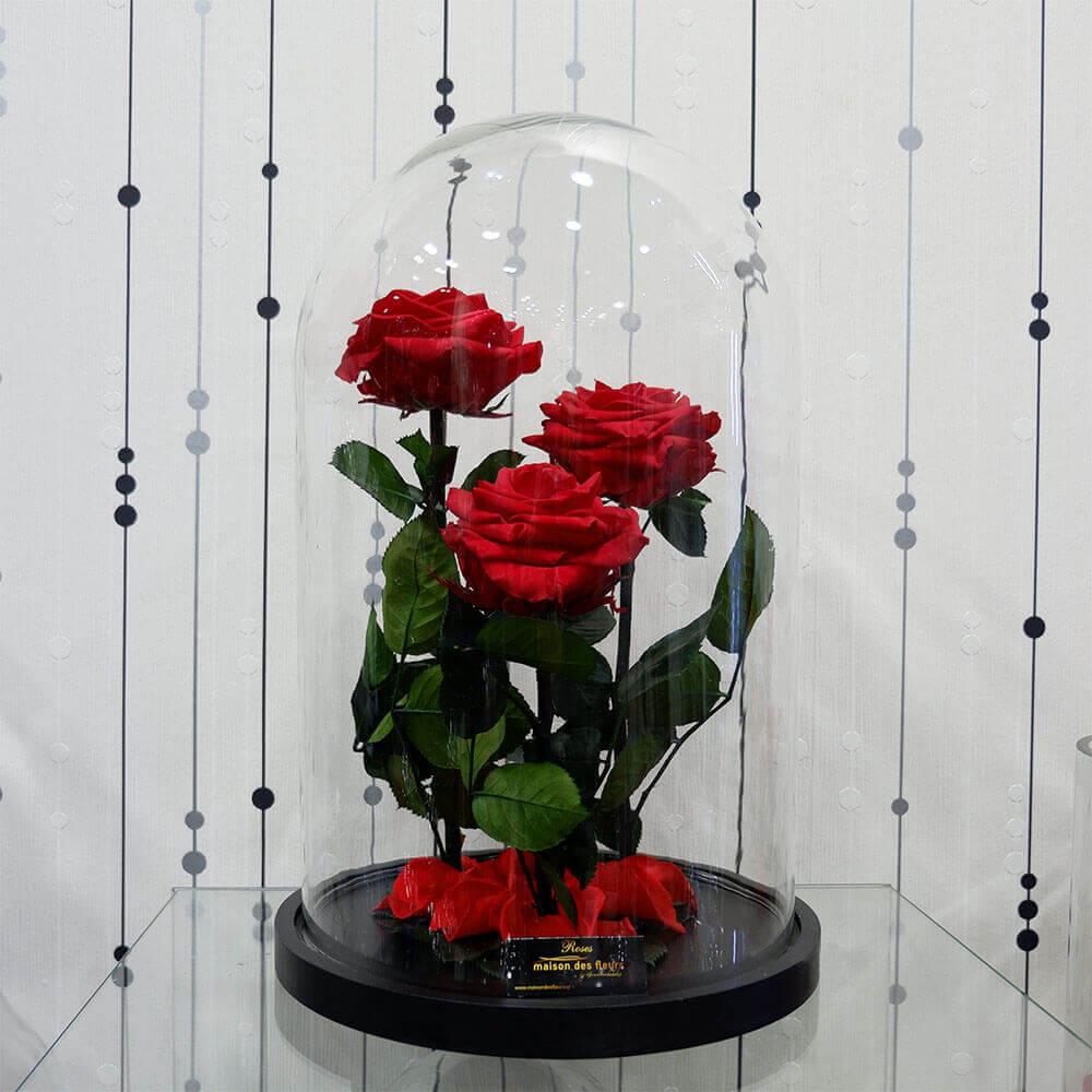 Forever Roses Red 3