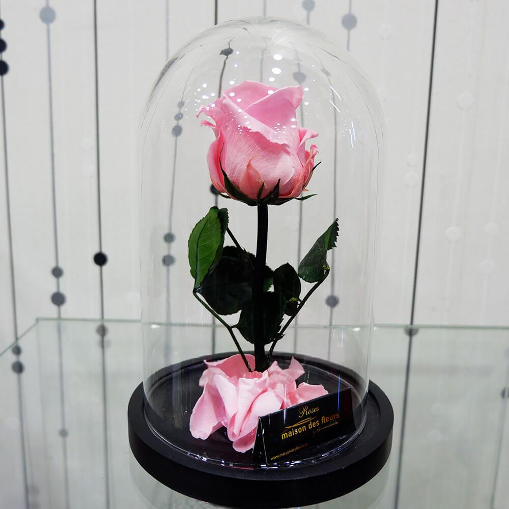 Forever Roses - Forever Light Pink