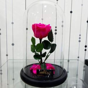 Forever Roses - Forever Fuchsia