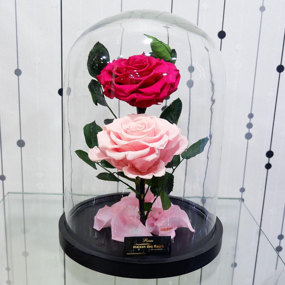 Forever Roses - Forever Twin Roses