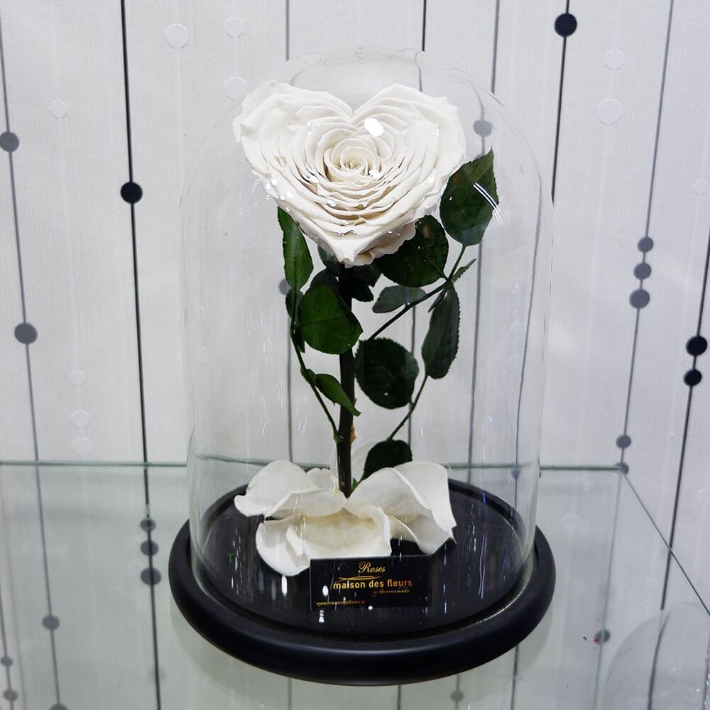 Λουλούδια Αγάπης - Forever Roses - Forever Love White