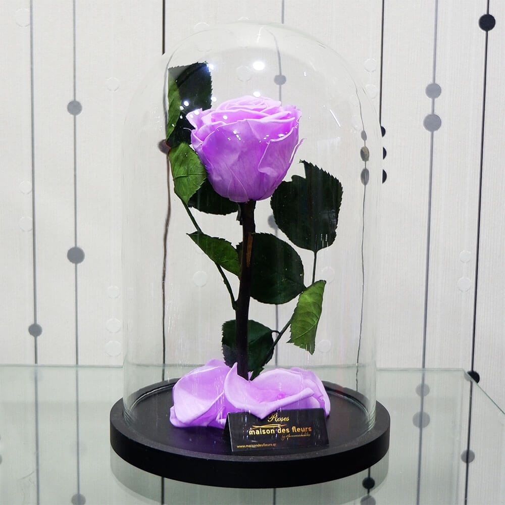 Forever Roses - Forever Lila