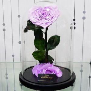 Λουλούδια Αγάπης - Forever Roses - Forever Love Pink
