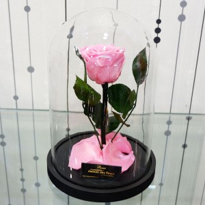 Forever Roses Pink