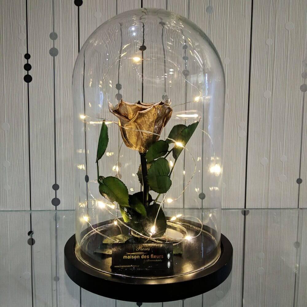 Forever Roses - Forever Gold Led