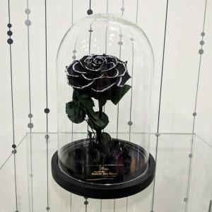 Forever Roses - Forever special black