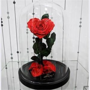 Λουλούδια Αγάπης - Forever Roses - Forever Love