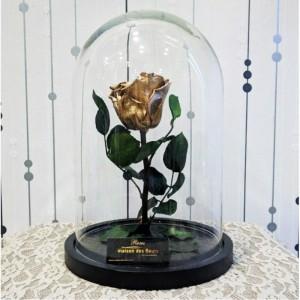 Forever Roses - Forever Gold