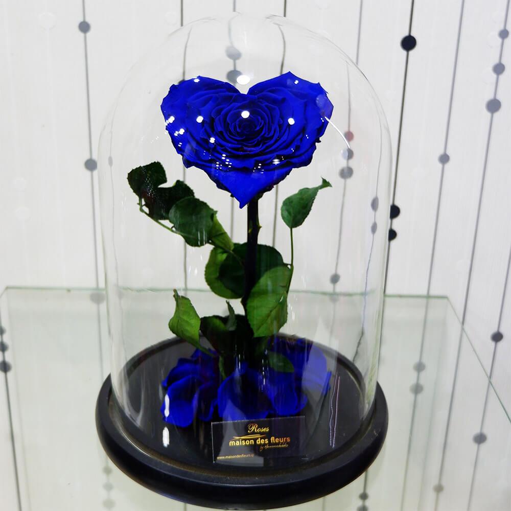 Forever Roses -  Forever Love Blue
