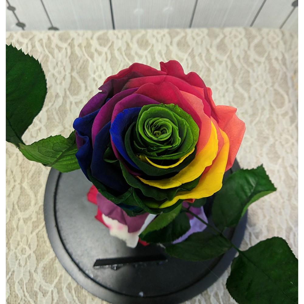 Forever Roses - Forever Rainbow 3