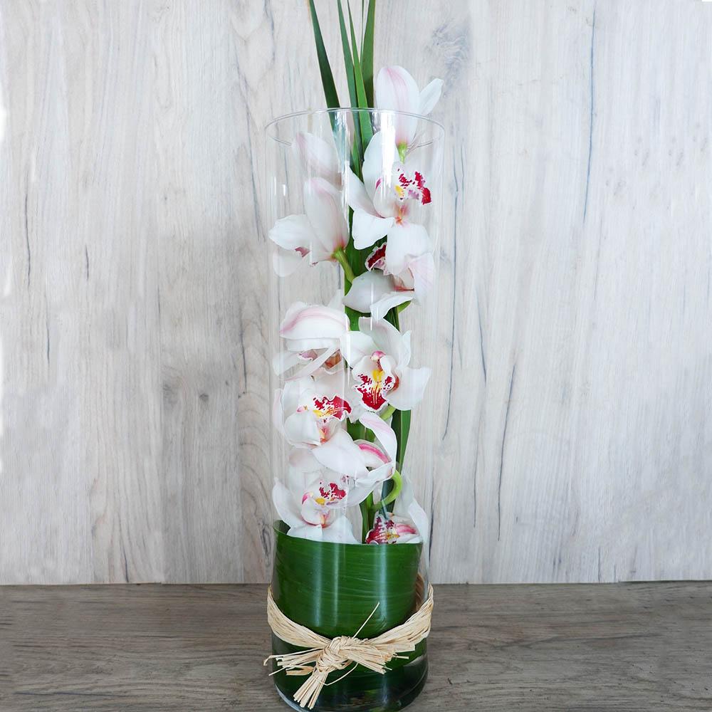 Cymbidium σε γυαλί - Σύνθεση λουλουδιών | Ανθοπωλείο Maison des fleurs