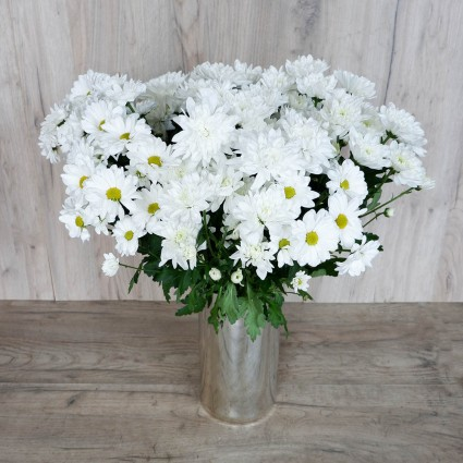 White Chrysanthemum - Create your own bouquet with White Chrysanthemums!