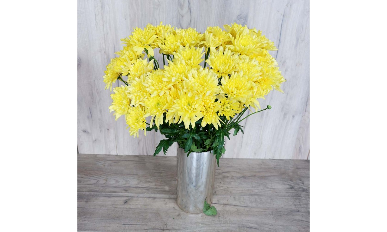Yellow Chrysanthemum - Create your own bouquet with Yellow Chrysanthemums!