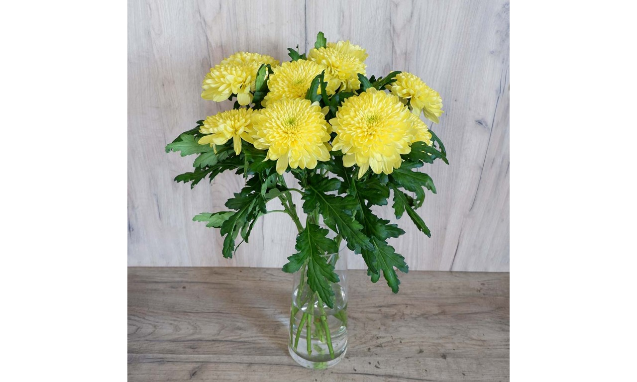 Υellow Chrysanthemum One Head - Create your own bouquet with yellow chrysanthemums Chrysanthemum One Head!