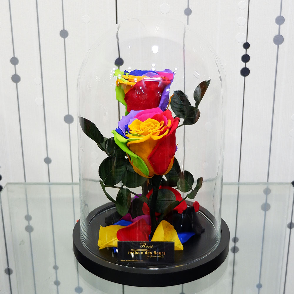 Forever Roses - Forever Rainbow Duo