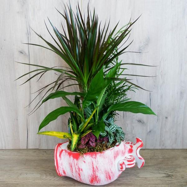Συνθέσεις Φυτών